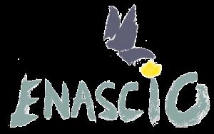 enascio - validation finale